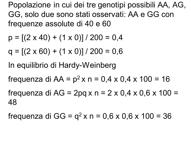 Popolazione in cui dei tre genotipi possibili AA, AG, GG, solo due sono stati osservati: AA e GG con frequenze assolute di 40 e 60 p = [(2 x 40) + (1 x 0)] / 200 = 0,4 q = [(2 x 60) + (1 x 0)] / 200 = 0,6 In equilibrio di Hardy-Weinberg frequenza di AA = p2 x n = 0,4 x 0,4 x 100 = 16 frequenza di AG = 2pq x n = 2 x 0,4 x 0,6 x 100 = 48 frequenza di GG = q2 x n = 0,6 x 0,6 x 100 = 36